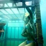 Terror submarino en la gran pantalla con «Tiburón 3D: La Presa»