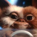 El guión de Gremlins 3 ya está listoHa sido escrito por Chris Columbus, autor del libreto original.