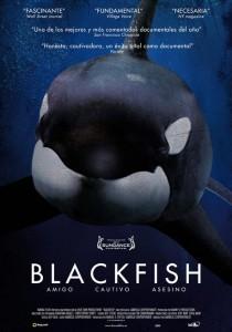blackfish-cartel
