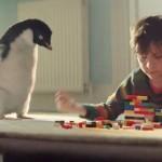 Conoce al Pingüino que emociona al mundo entero
