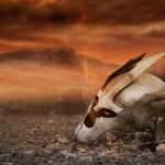 Codemasters resucita la saga 'Overlord'