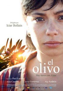 el-olivo-cartel