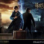 Los mejores momentos del Harry Potter Film Fest o como ver 8 películas seguidas sin volverse loco
