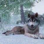 Frontier celebra la navidad en Planet Zoo con el DLC invernal, Artic Pack